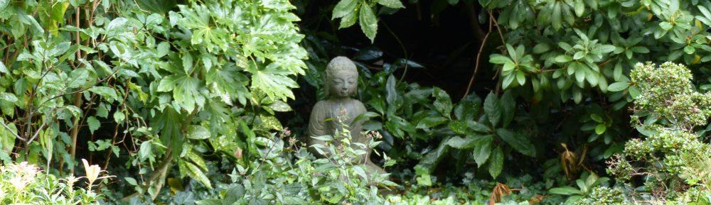Meditatie, Yoga en Mindfulness